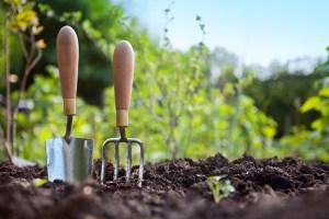 Gardening(1)